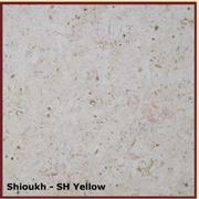 Shioukh - SH Yellow