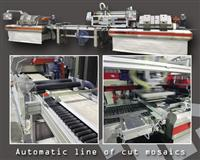 Automatic line of cut mosaics