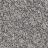 G343 Granite grey color granite tile