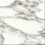 Arabescato White Marble Tiles