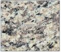 Chinese Tiger Skin White Granite Samples Tile