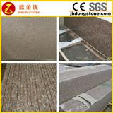 competitive price G687 granite slabs