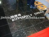 granite floor tiles in butterfly green