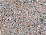 China Rosa porrino,chinese granite