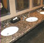 Wet Bar Granite Top with Thickness Tolerance of 1mm