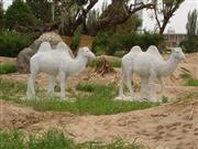camel stone statue, camel marble statue