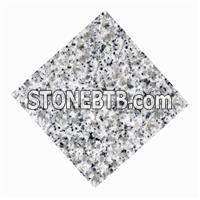 China Grey Granite Tile of 305x305x10mm