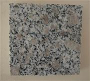 Grey Granite Slabs and Tiles