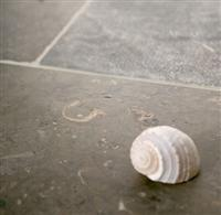 Nova Blue Limestone - New product