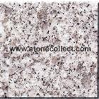 G602 Granite tiles, slabs (similar with silver grey)