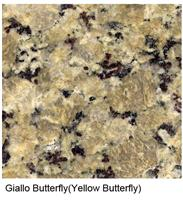 Giallo Butterly Granite