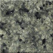 Green Marinace Polished Slabs Tiles