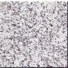 G633 Padang light Granite tiles and slabs