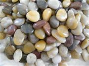 Polished Pebbles/ Pebble/ Multicolour Pebbles