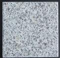 Crystal White Jade Granite G355
