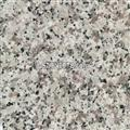 G439 White Flower Granite Tile