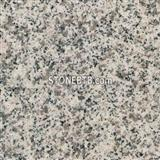 G640 Bianco Sardo  Chinese granite Tile