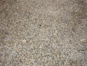 New Carioco Gold Granite Tiles
