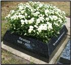 Rustenburg granite kerb style cremation memorial