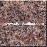 G300 Shanzha Red granite tiles and slabs