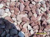 Chicken Red  Pebbles