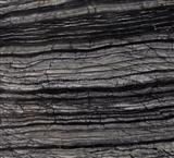 Black forest,Tree black, Antique vein marble,black