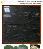 Cloudy Veins Black Marble