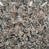 Caledonia Granite Indoor Brown Paving Tiles, Slabs, Stairs, Kitchen Countertops At Good Price