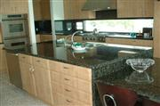 Verde Butterfly Granite Countertop