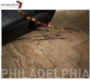 Philadelphia Scabos Travertine Pattern