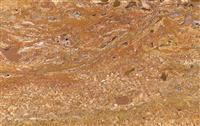 Orange Travertine