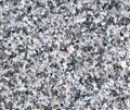 G623 Bella White Granite