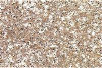 Red Granite Stone Slab