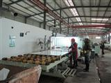 Polishing line - White glass Marble
