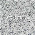 Chinese Jinjiang White Granite