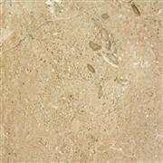 Polished Crema Dalmatia Granite